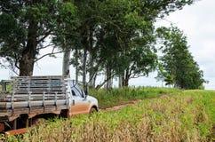 在通过在大豆种植园旁边的土路的卡车 库存图片