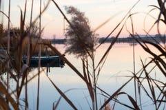 在通过里德被看见的湖的秋天田园诗 免版税库存图片