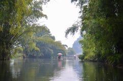 在遇龙河中 库存照片