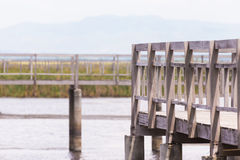 在道路方式沼泽领域的木篱芭 免版税库存图片