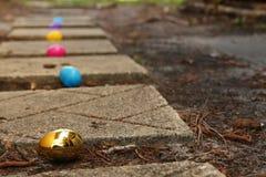 在道路的食者鸡蛋 图库摄影
