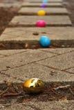 在道路的食者鸡蛋 库存照片