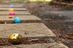 在道路的食者鸡蛋 库存图片