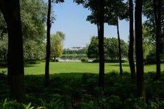在遮荫森林后的湖边草坪在晴朗的夏天afterno城市 库存照片