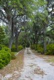 在邦纳维尔公墓的路 库存图片