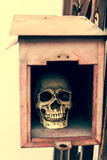 在邮箱的小人的头骨 库存照片