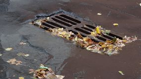 在都市流失栅格附近的下落的叶子在街道上 股票录像