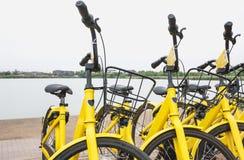 在都市的出租自行车 共有的自行车公众自行车 库存图片