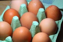 在配件箱的鸡蛋 免版税库存图片