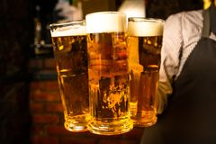 在酒吧的啤酒和您的装饰的自由空间 免版税图库摄影