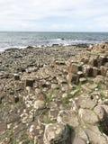 在酷寒北风爱尔兰,欧洲的巨型` s堤道 库存图片