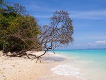 在酸值岩石海岛上的海滩 库存照片