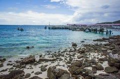 在酸值larn芭达亚的鲨鱼海湾, 库存照片