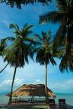在酸值Phangan泰国的海滩 免版税库存照片