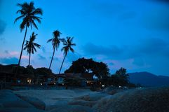在酸值Phangan的海滩 免版税图库摄影