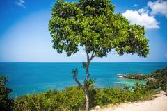 在酸值Phangan视图的热带海滩从路- 免版税库存图片