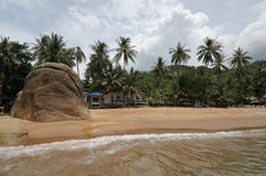 在酸值Samui的珊瑚海滩 免版税图库摄影