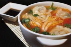 在酸蕃茄汤的煮沸的中国饺子 免版税库存图片