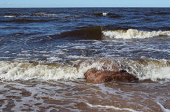 在里加墨西哥湾海岸的早期的春天 库存照片