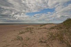 在里加,拉脱维亚附近的白色沙丘 库存图片