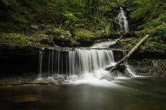 在里基茨幽谷国家公园,宾夕法尼亚的瀑布 免版税图库摄影