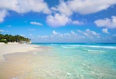 在里维埃拉玛雅人的海滨del卡门海滩 免版税库存图片