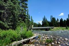 在重油河的桥梁 免版税库存图片