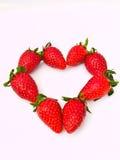 在重点线路的新草莓线路 免版税图库摄影