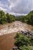 在重的降雨量以后的泥泞的小河 库存照片