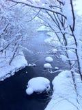 在重的飞雪以后,结冰的河在公园 图库摄影