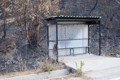 在野火期间在葡萄牙 库存照片