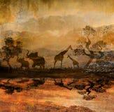 在野生动物非洲剪影的徒步旅行队 免版税库存照片