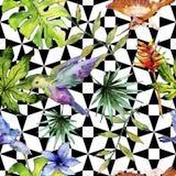 在野生生物的天空鸟五颜六色的colibri由水彩样式 无缝的背景模式 向量例证
