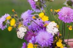 在野花的五颜六色的花束,绿色背景 免版税图库摄影