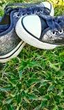在野花的银色鞋子, 免版税库存照片