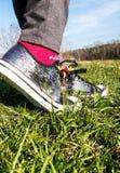 在野花的银色鞋子, 免版税库存图片