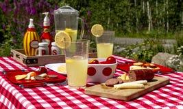 在野花领域的夏天野餐 库存图片