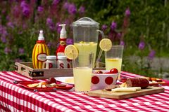 在野花领域的夏天野餐 免版税库存图片