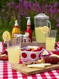 在野花领域的夏天野餐 库存照片