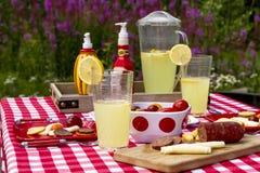在野花领域的夏天野餐 免版税库存照片