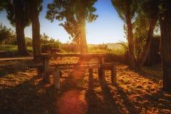 在野餐区的梦想的日落 免版税库存照片