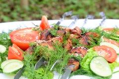 在野餐烹调的肉盘 免版税库存照片