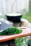 在野餐的切口绿色 免版税库存图片