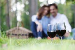 在野餐的夫妇 免版税图库摄影