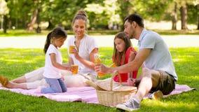 在野餐的幸福家庭饮用的汁液在公园 股票录像
