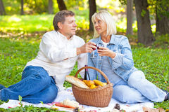 在野餐的成熟夫妇 免版税库存图片