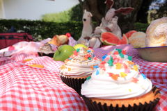 在野餐的杯形蛋糕 库存照片