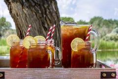 在野餐的被冰的茶在大章克申,科罗拉多 图库摄影