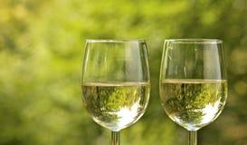 在野餐的酒杯。 免版税库存图片
