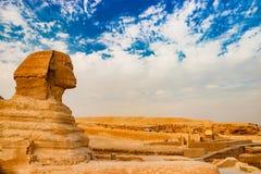 在金字塔附近的狮身人面象在吉萨棉 开罗埃及 免版税库存图片